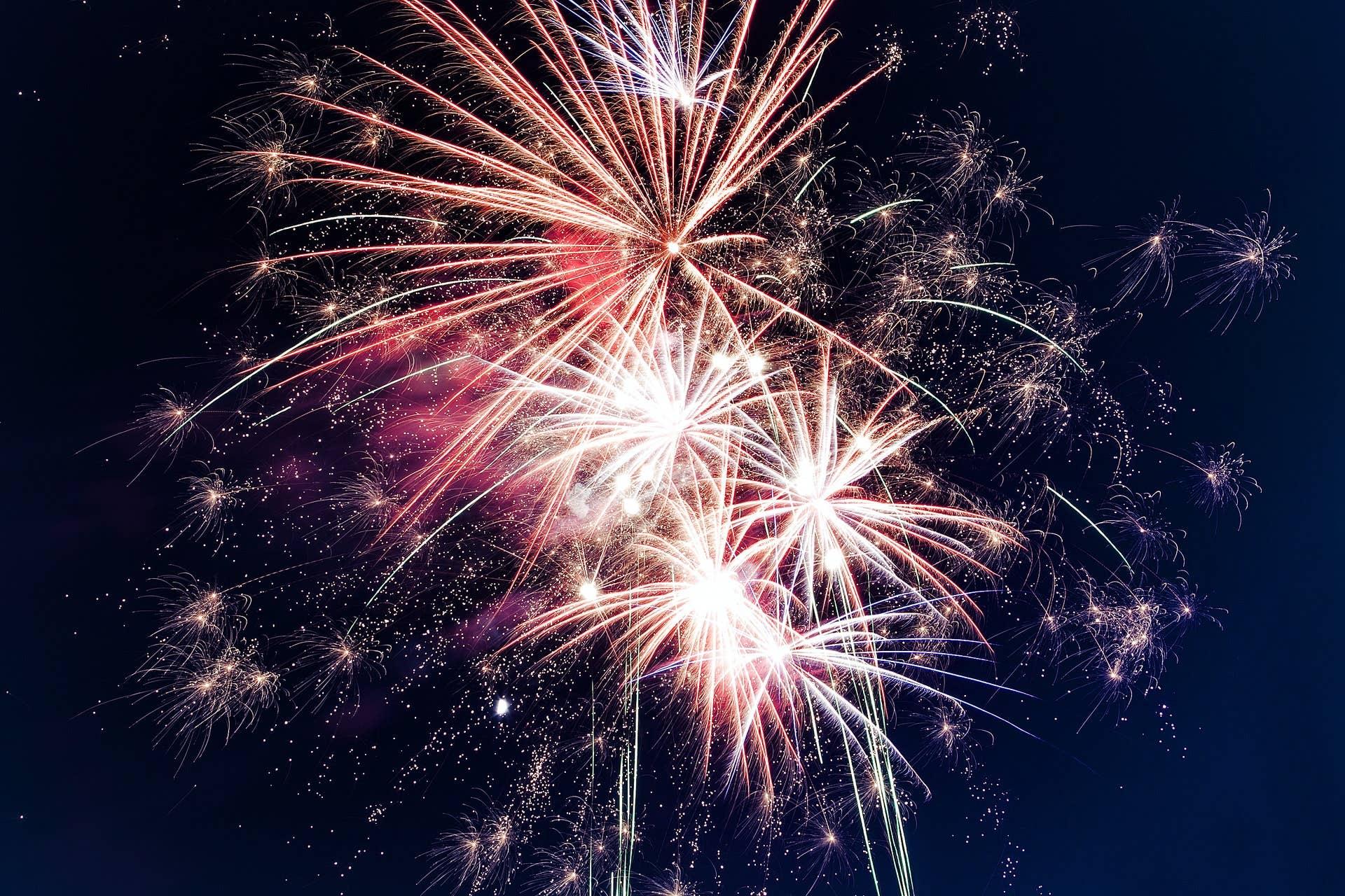 Fireworks: How to keep your dog calm - myDoggySocial